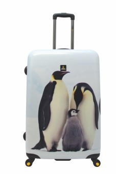 "National Geographic Nature of Love 4W 27"" Luggage (Penguin)"