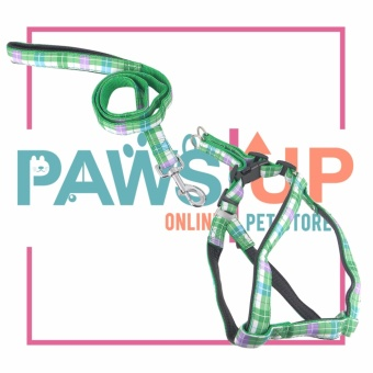 Paws Up Dog Leash Small (Green) Price Philippines