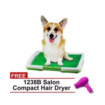 Pet Potty Trainer Indoor Grass (Green) with FREE Hair dryer violet