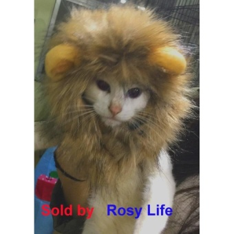 QJQ Lion Mane Wig for Dog and Cat Costume Pet Adjustable Washable Comfortable Fancy Lion Hair Dog Clothes Dress for Halloween Christmas Easter Festival Party Activity - intl - picture 2