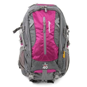 Racini 40-372 Mountaineering Backpack (Dark Gray/ Violet)