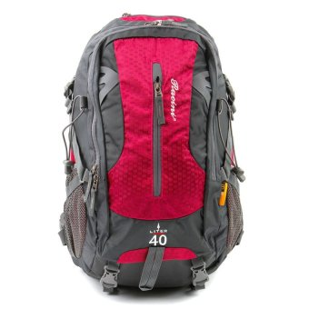 Racini 40-372 Mountaineering Backpack (Dark Gray/Red Violet)