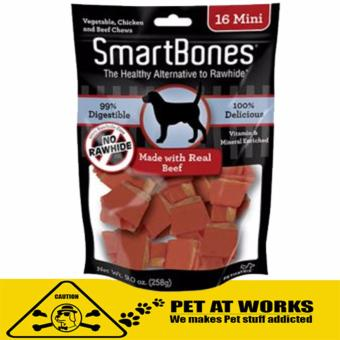 Smart Bone Mini Real Beef Dog Treats Chews (16 Pack) 258g For Petsand Dog Chew Bone Price Philippines