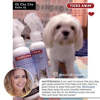 Ticks Away anti tick (garapata) & flea (pulgas) & lice (kuto) spray for dogs & cats - fipronil active ingredient - 5