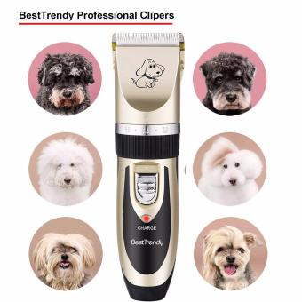 VANPIE Grooming Kit Electric Rechargeable Pet Dog Cat Animal Hair Trimmer Clipper Shaver Gold - intl - 3